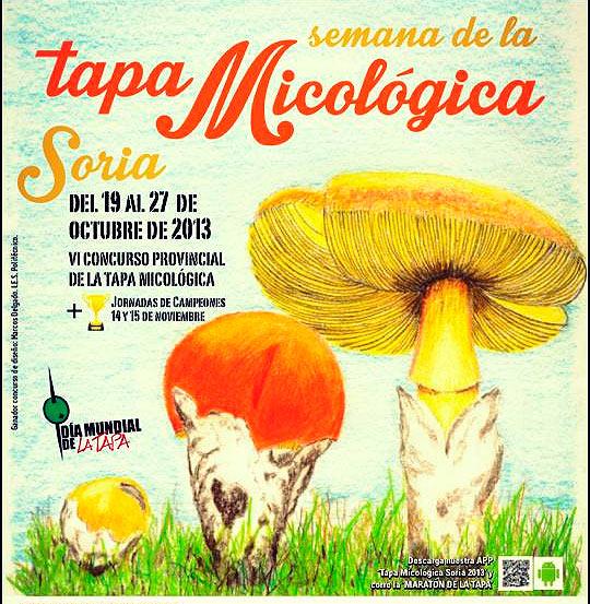 Tapa-Micológica-2013-en-la-ciudad-de-Soria