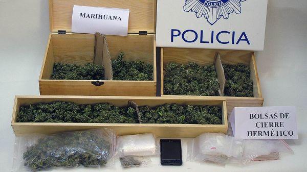 cogollos-de-marihuana-en-Soria